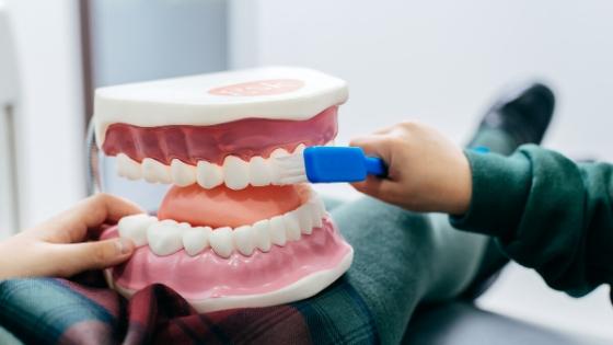 Sarro dental: Por qué se forma y cómo podemos evitarlo