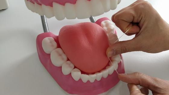 Como usar el hilo dental correctamente